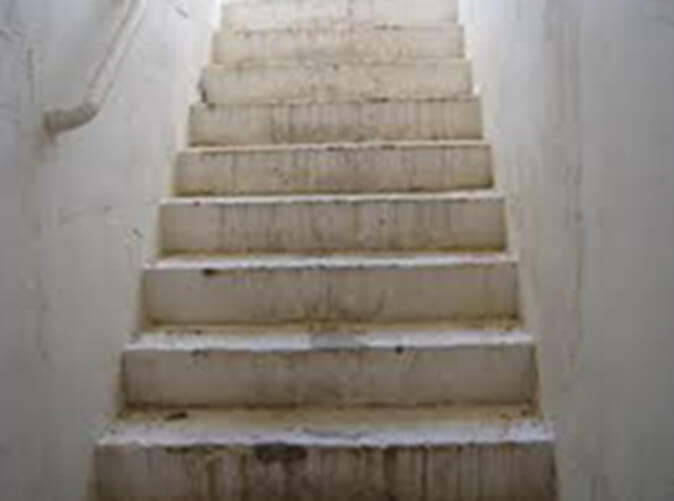 lead paint removal & asbestos removal